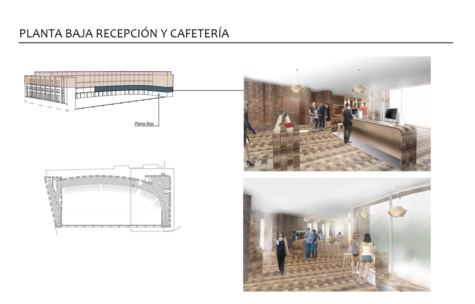Espacios de recepción y cafetería
